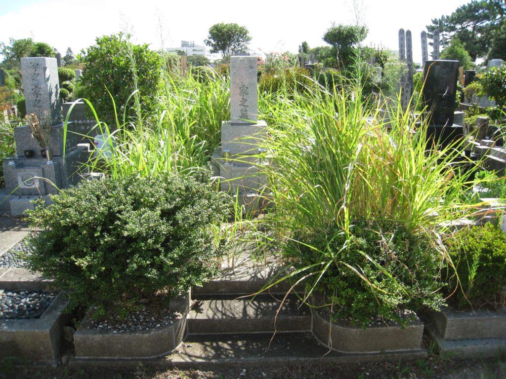 雑草のひどいお墓
